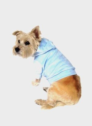 Powder Blue Velour Pullover Dog Hoodie