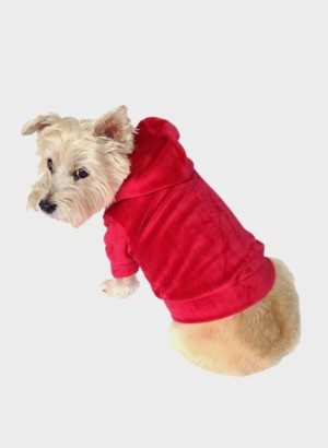 Red Velour Zip Front Dog Hoodie
