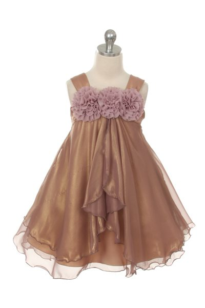 Beautiful Shiny Chiffon Dress
