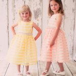 Organza Chenille Fabric Stripe Dress