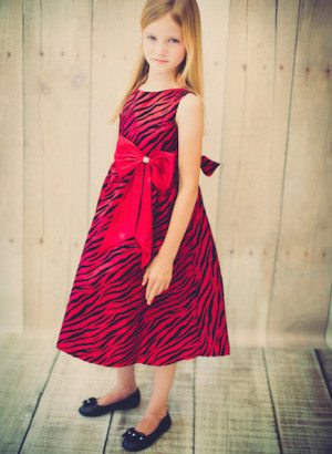 Zebra Pattern Velvet Flocking Taffeta Dress