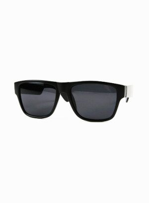 Black Smoke Lens Wayfarer Sunglasses